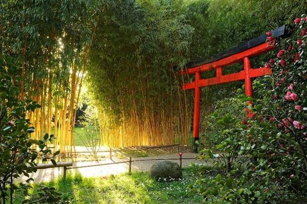 bambouserai-anduze-cevennes-location-chalet-